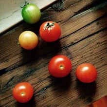 Load image into Gallery viewer, Mini-Pot Tomate cerise