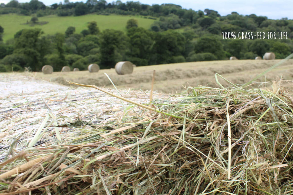 pasture fed for life organic ethical meat boxes uk