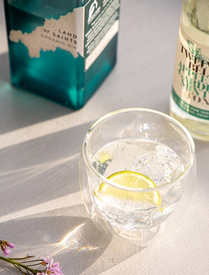 Gin gift set, father's day gift ideas
