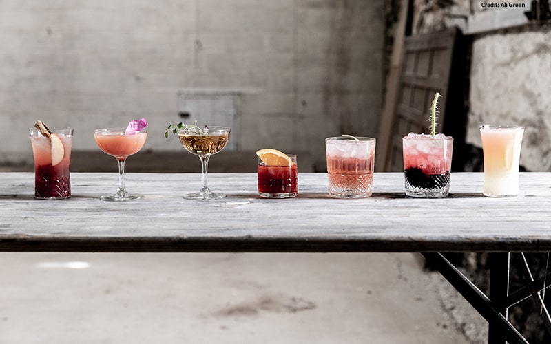 organic gin cocktail recipes summer barbecue drink ideas