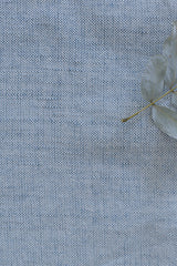 Cotton-Linen Chambray (in Shade 2)