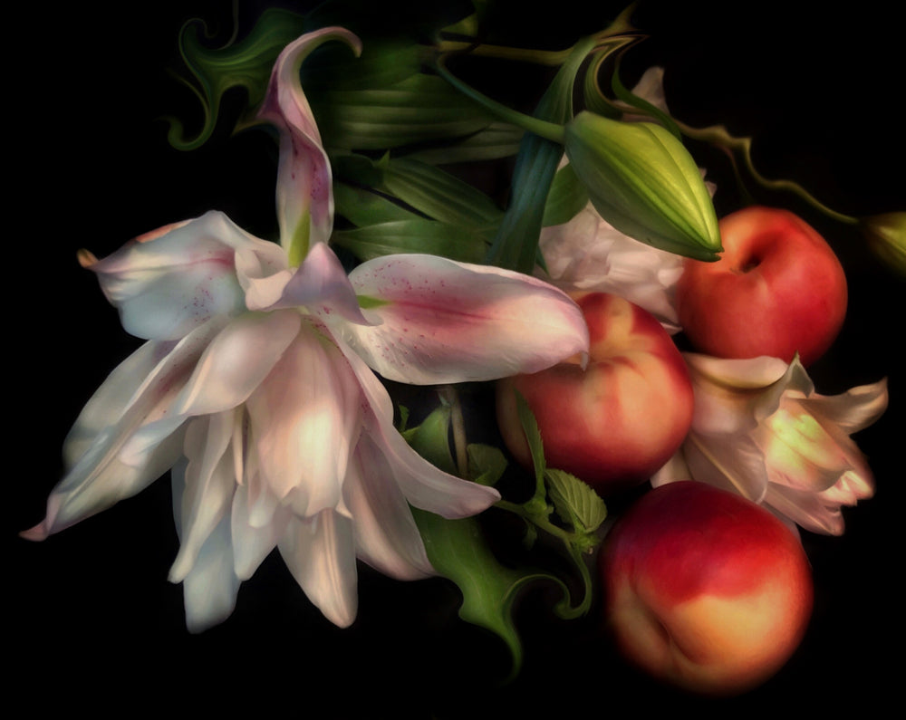Load image into Gallery viewer, Peach Lily