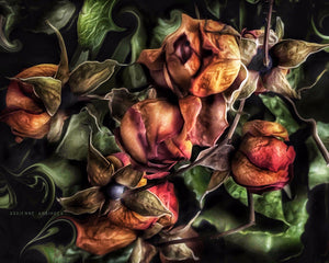 Load image into Gallery viewer, Immortal Roses