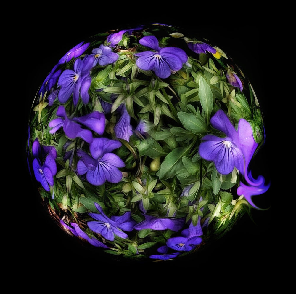 Load image into Gallery viewer, Floral Earth