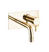 BT50 Wall mounted brass tap with mixer and small plate