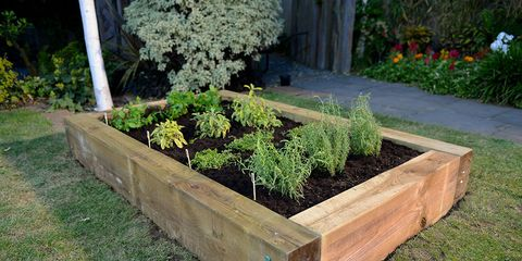 Raised Herb Bed complete