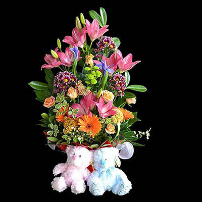 Baby twins gift box colorful flowers two teddy bears package