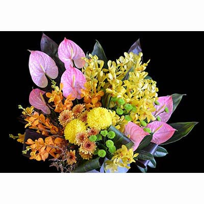 Tropical flowers bright colours pink anthuriums yellow orchids