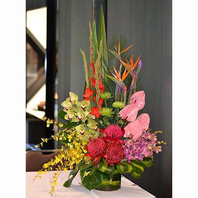 Tropical flowers bright yellow colorful orchids red banksias pink anthuriums