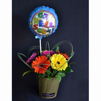 bright gerberas balloon gift pot
