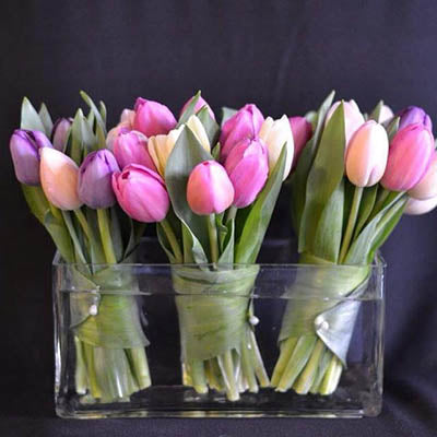 paste colored tulip flower arrangement