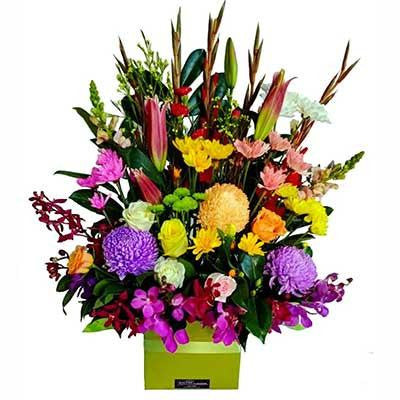 Large colorful flower box arrangement