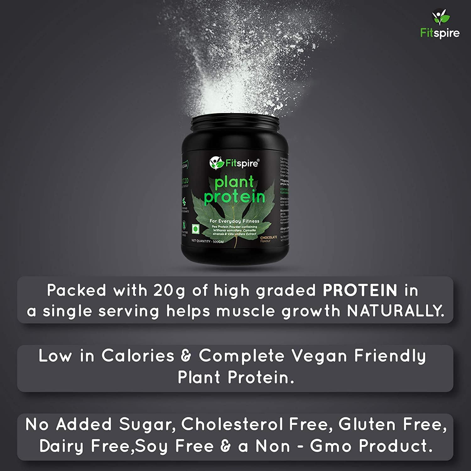 Whey Protein with Loaded Fit Kit | No Added Sugar, Low Carbs, Zero Cholesterol & Gluten Free | Coffee | 4 Kg