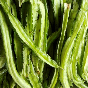 Sigarilyas/ Winged Bean