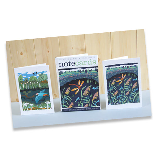 BOX OF NOTE CARDS - HAWKER/KINGFISHER