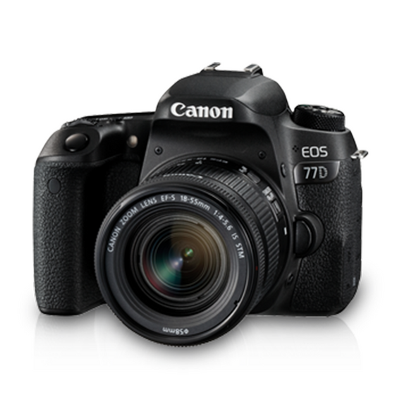 Canon EOS 77D (W) w/18-55 IS STM DSLR Camera