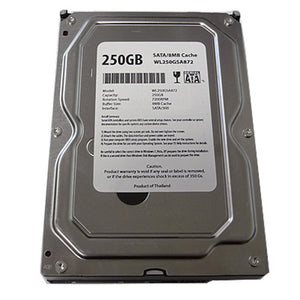 "Western Digital WL 250GB 7200RPM 8MB Cache ATA/100 IDE PATA 3.5"" Internal Desktop Hard Drive"