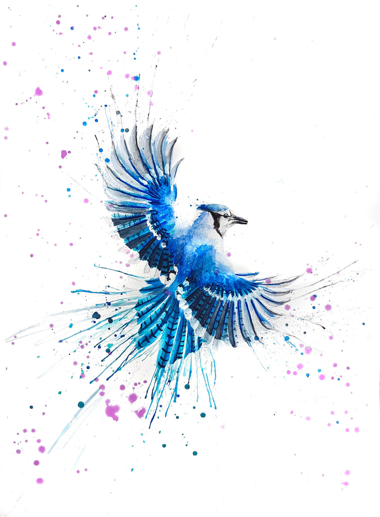 Bluejay watercolor painting