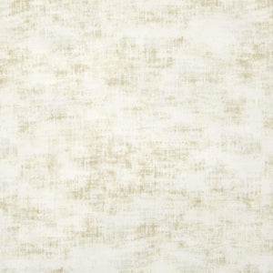 Fabric - Blenders Studio Basic Ivory Ivory