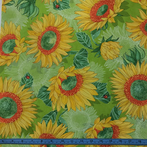 Fabric - Patchwork Solana Sunflower Sprout Light Green