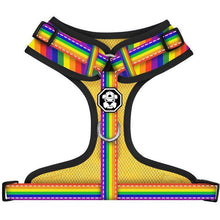 Load image into Gallery viewer, Pride Flag | Adjustable Mesh Harness