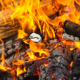 Toasting a marshmellow on an open fire pit