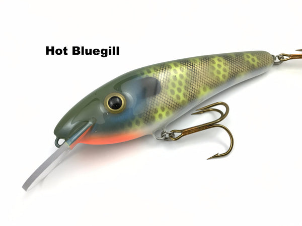 "Blue Water Baits ResX 6.5"" Shad"