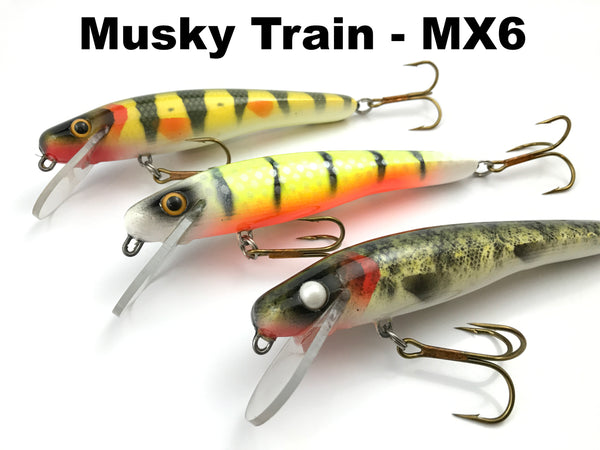 Muskie Train MX6