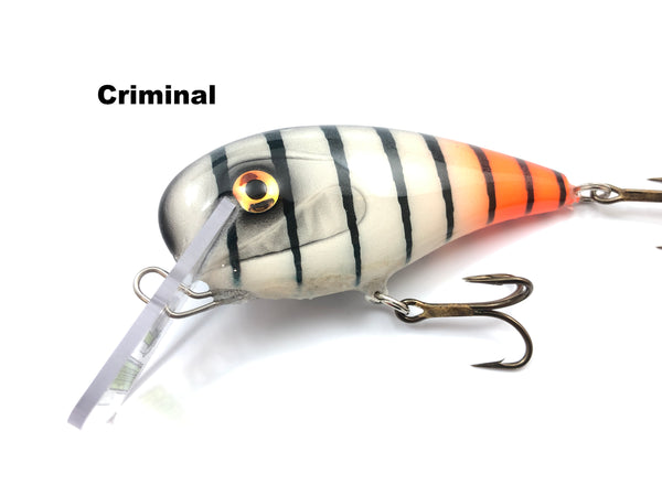 Adam's Custom Lures Road Kill Crankbait