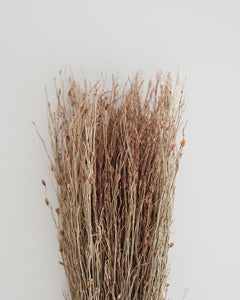Mini Broom(firm) - Natural