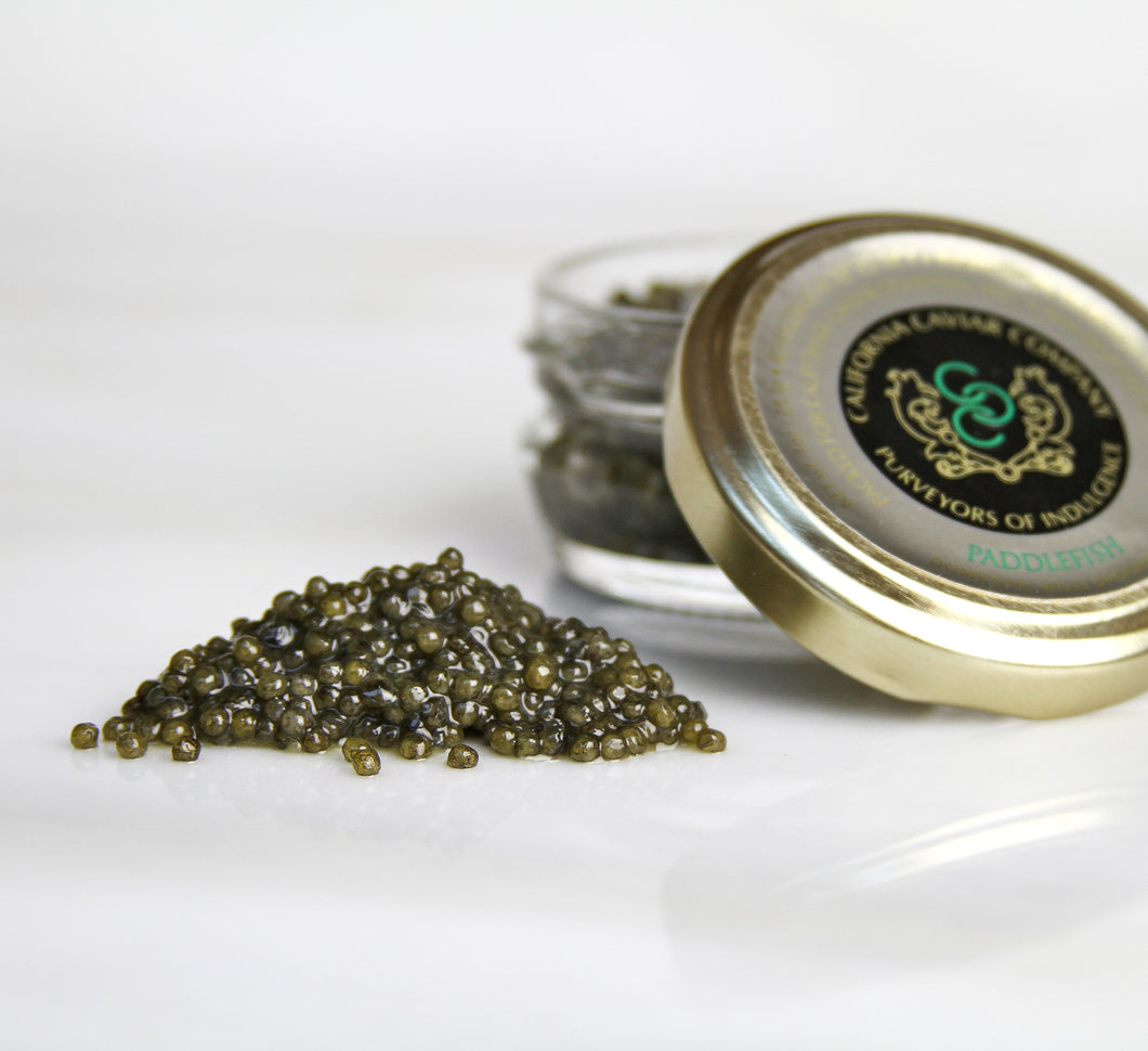 Paddlefish Sturgeon Caviar - A great substitute for the pricier sevruga, the assertive paddlefish is a perfect accompaniment to smoked fish and a glass of brut rosé or a cold shot of vodka.