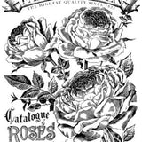 Catalogue of Roses 24x33 Paintable™ Decor Transfer™