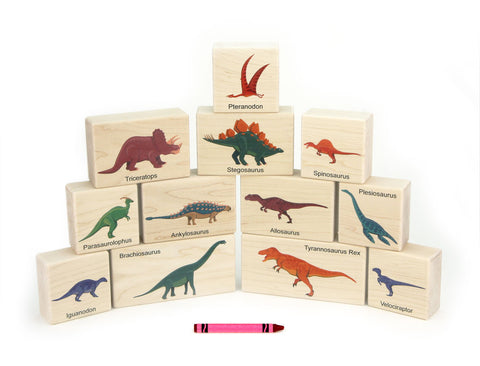 12 pc Dinosaur Maple Building Blocks - FREE Shipping