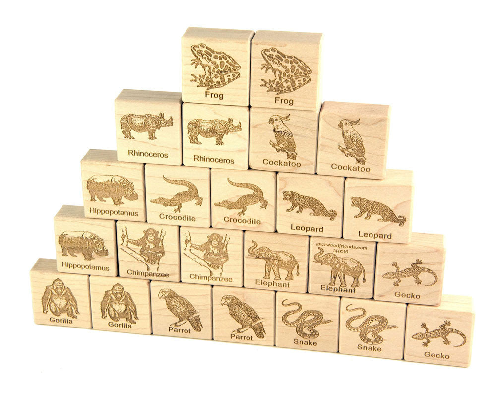 Jungle Animals Wooden Matching Game - 24 pc Set - FREE Shipping