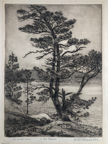 "Canadian Artist William Walker Alexander Etching ""The Twisted Pine"" signed, titled & inscribed."