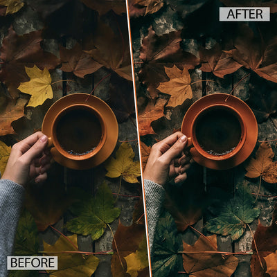 AUTUMN // 5 DESKTOP PRESETS
