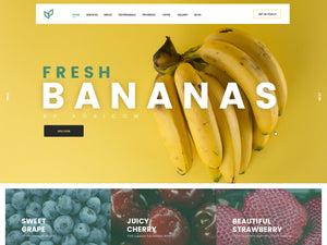 Agriculture - Banana - Online Shop Style