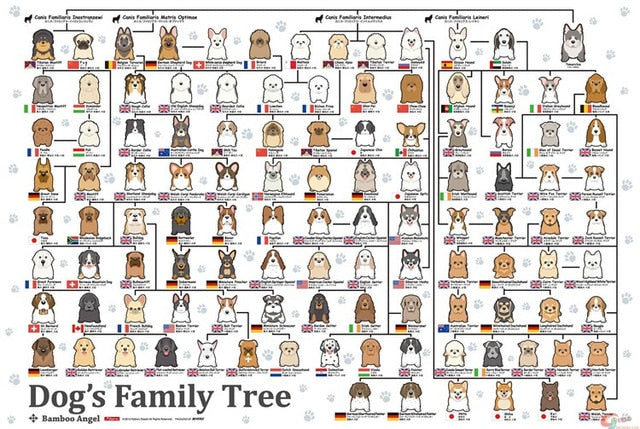 Dog's Family Tree
