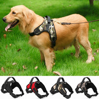 Nylon Heavy Duty Dog Pet Harness Collar Adjustable Padded - Extra Large, Large, Medium, Small