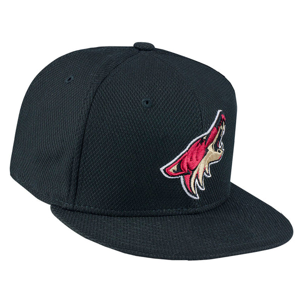 Arizona Coyotes Black Snapback Hat