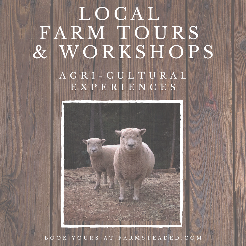 Trail Times: Summertime Farm Tours & Workshops
