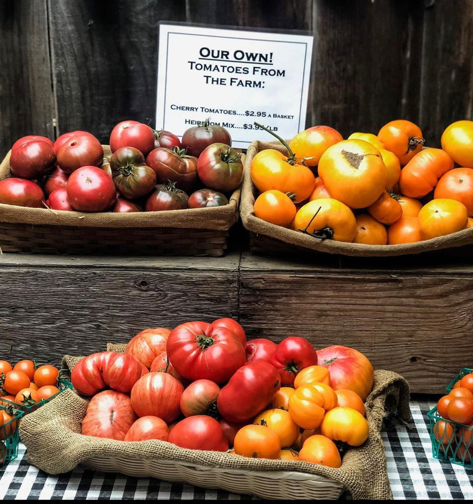Trail Times:  All About Tomatoes, this season's happenings, recipes and more!