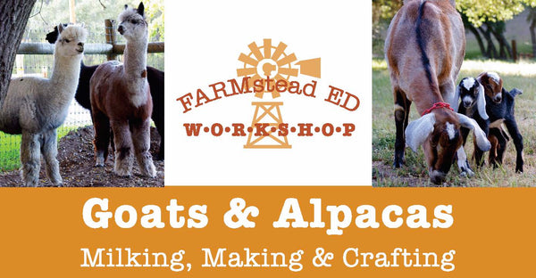 Goats & Alpacas: Milking, Making & Crafting ~ Sunday Sept. 13th ~ 10a-1p