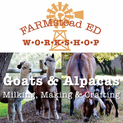 GOATS and ALPACAS: Milking, Making & Crafting   Sunday May 20th ~ 10a - 1p