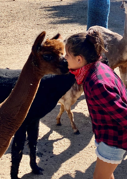 Goat & Alpaca Private Experience