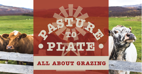 P2P:  All About Grazing! Saturday June 23rd 10a-1p