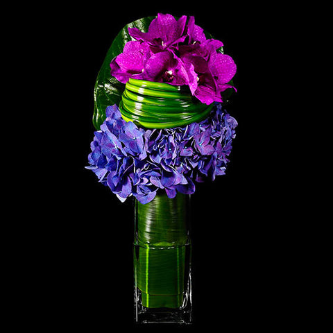 Colorful Hydrangea and Magenta Orchid Arrangement