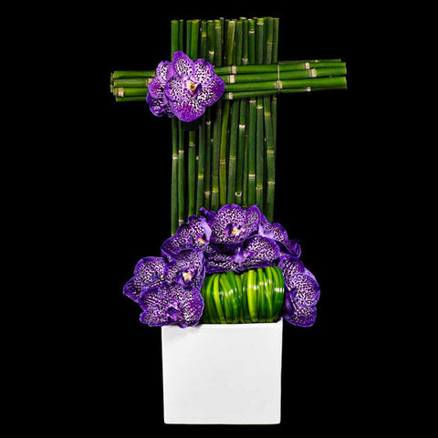 Striking Vanda Orchid Arrangement