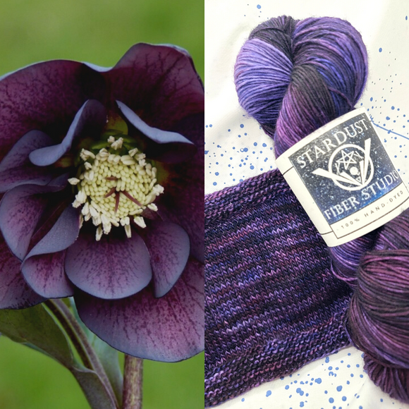 Hypnotic Hellebore - Made to Order