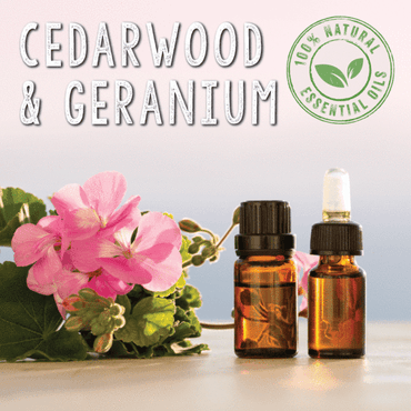 Cedarwood & Geranium Essential Oil Blend 10ml - SCENTA